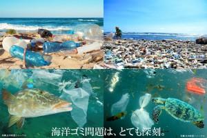 海洋ゴミ問題は、とても深刻。